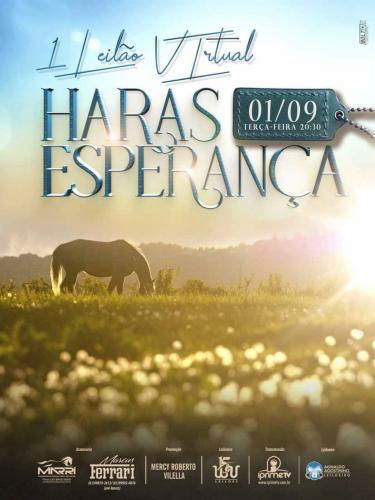 2º Leilão Virtual Haras Esperança