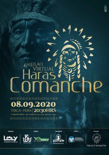 8º Leilão Virtual Haras Comanche