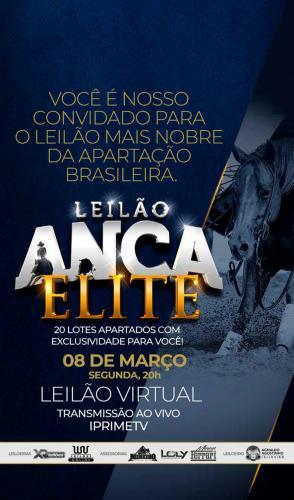 Leilão Anca - Associação Nacional do Cavalo de Apartação
