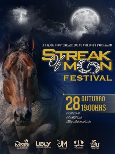 3º Leilão Virtual Streak OF Moon