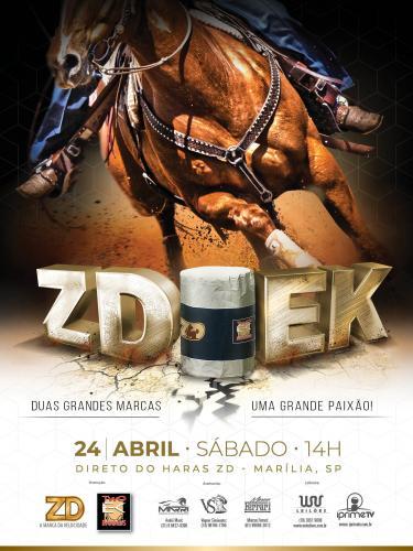12º Leilão Live ZD/EK