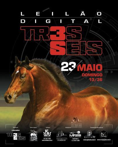 Leilão Digital TR3S SEIS