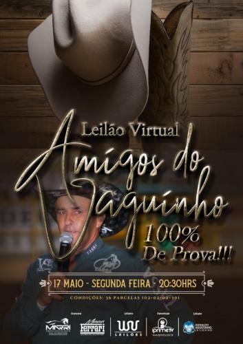 Leilão Virtual Amigos Do Vaguinho - 100 de prova!