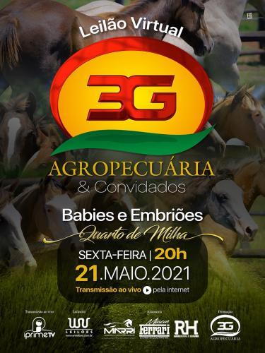 Leilão Virtual Agropecuaria 3G & Convidados - Babies e Embriões