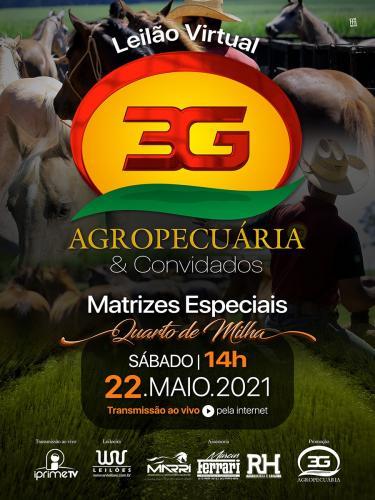 Leilão Virtual Agropecuaria 3G & Convidados - Matrizes Especiais