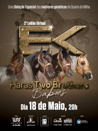 2º Leilão Virtual Haras Two Brothers - Babies