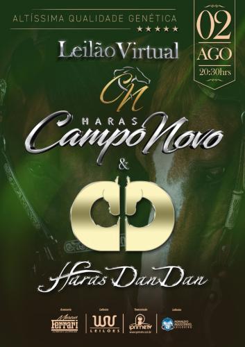 Leilão Virtual Haras Campo Novo e Haras Dan Dan