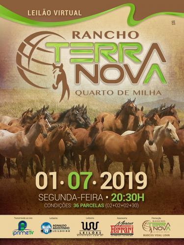 2º Leilão Rancho Terra Nova - Produção especial