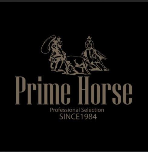 1º Leilão Prime Horse - Embriões e Babies