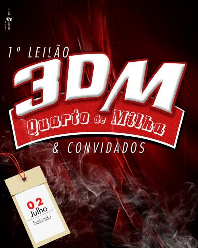 1º Leilão Haras 3DM e Convidados