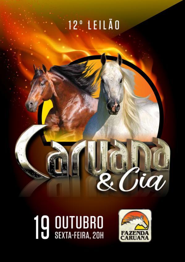 Confira as Fotos - 12º Leilão Caruana e Cia
