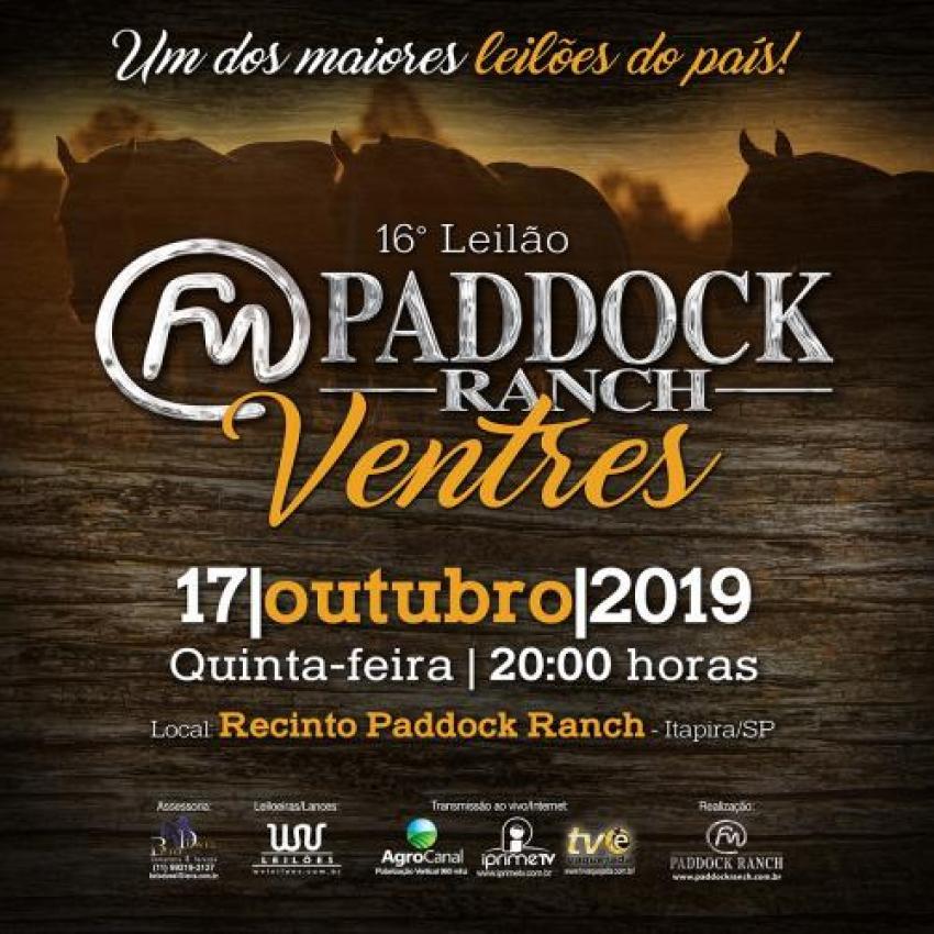 Confira as Fotos - Leilão Paddock Ranch - VENTRES